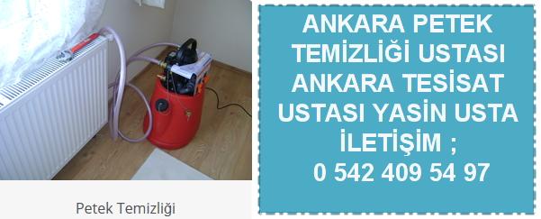 Ankara petek temizliği ustası